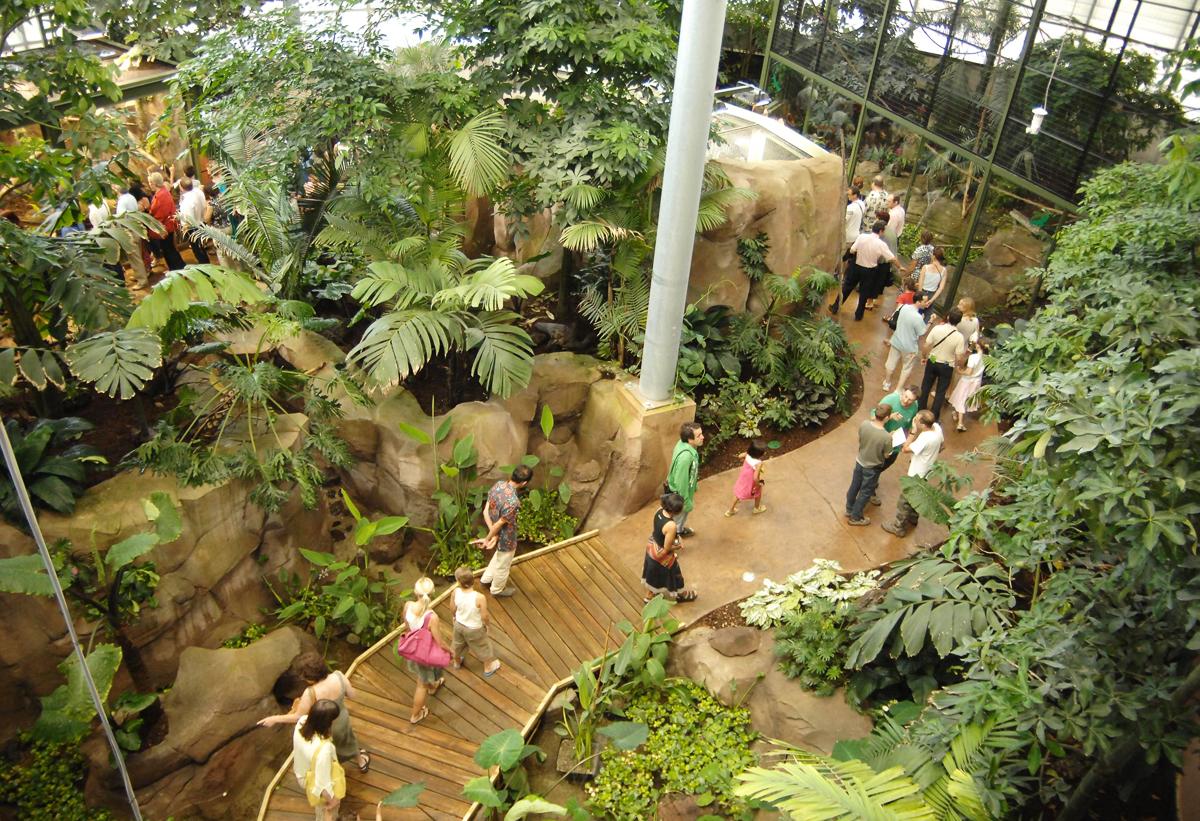 Zoológico de Montpellier