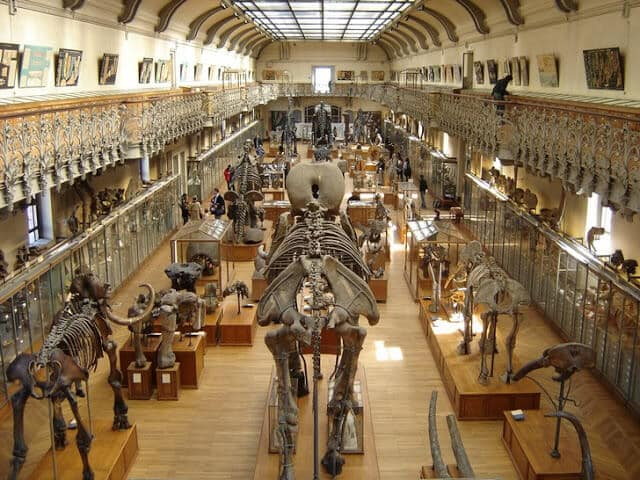 Museu Nacional de História Natural de Paris