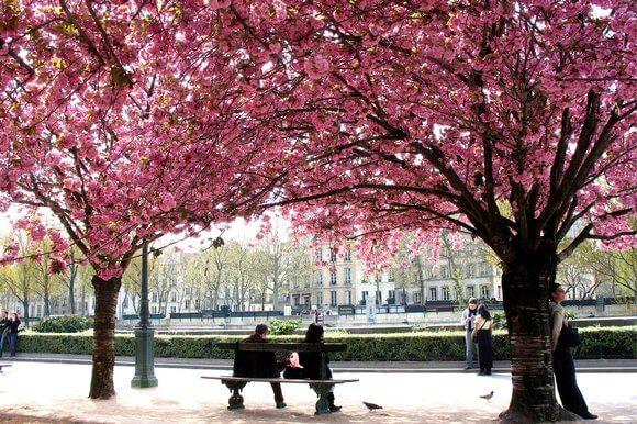 Parques na primavera em Paris