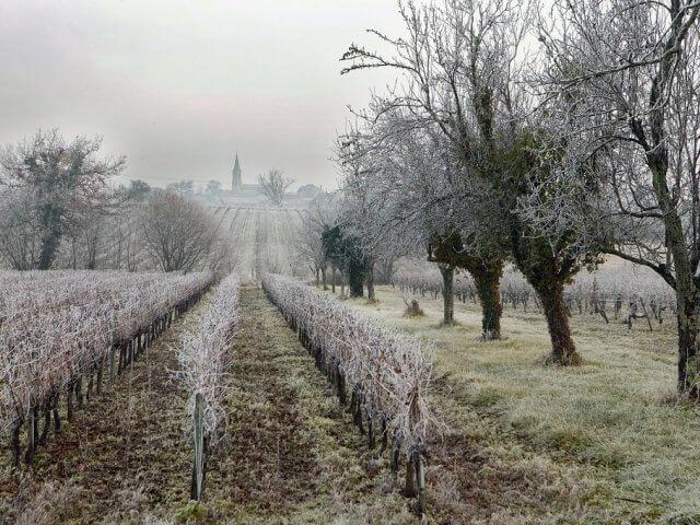 Geada no inverno em Bordéus
