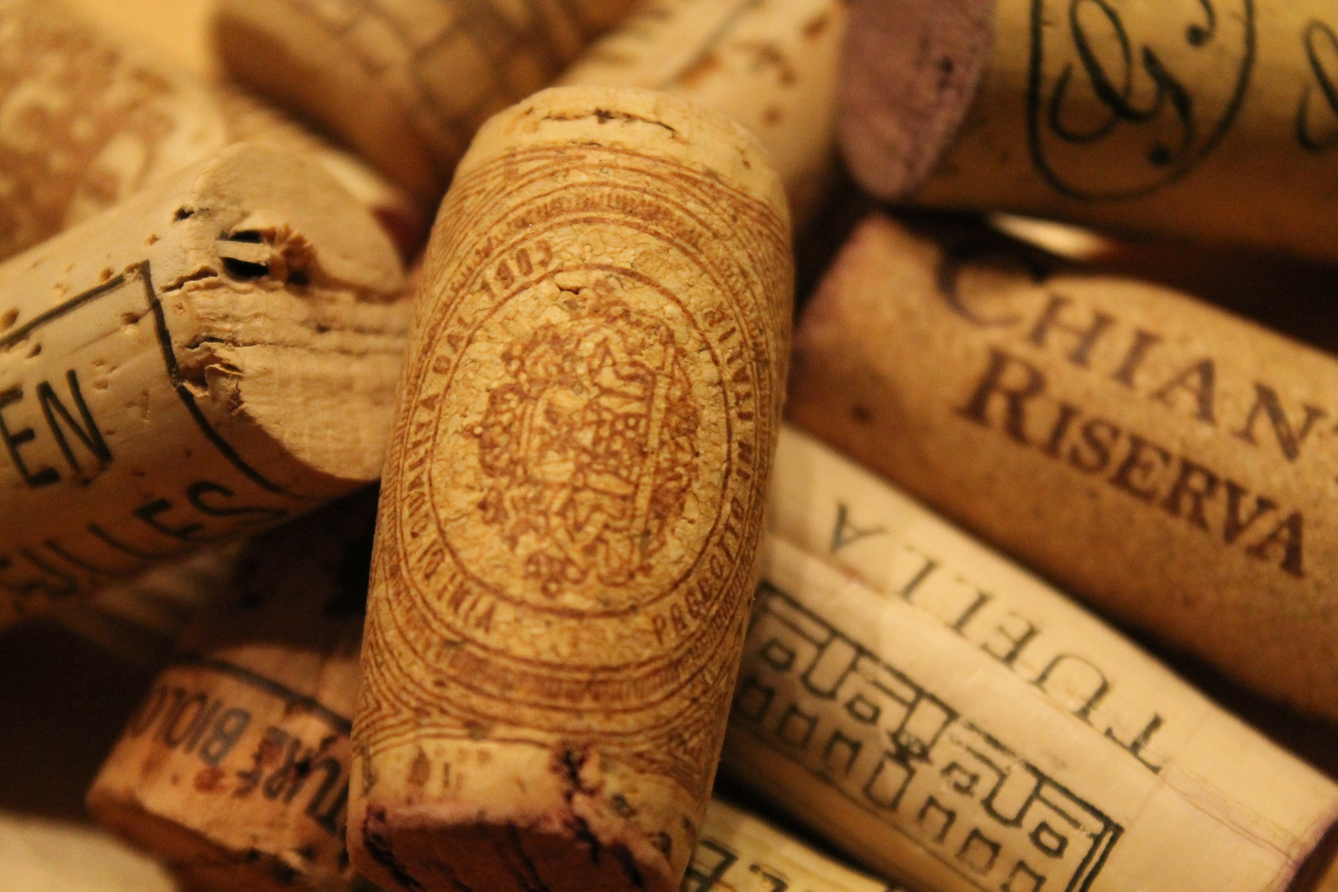Vinhos de Bordéus